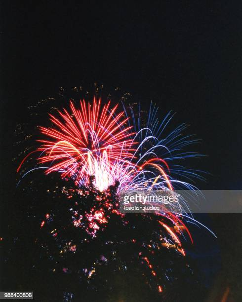 fireworks 2 FL 00