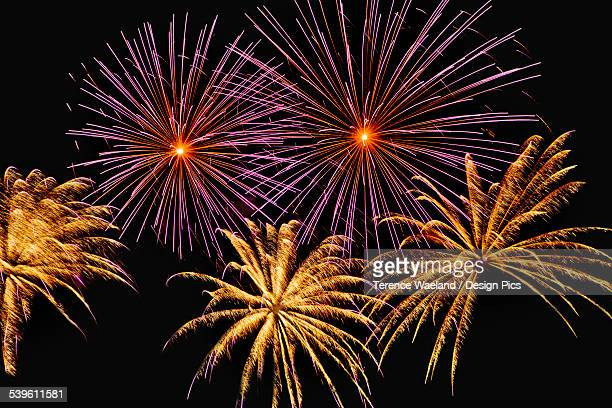 fireworks display - terence waeland stock pictures, royalty-free photos & images