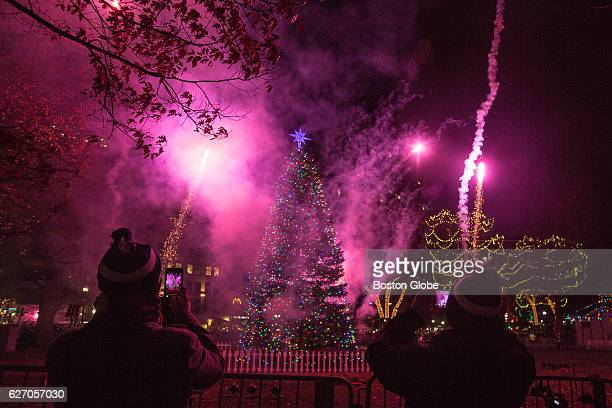 Fireworks go off behind the Christmas tree on the Boston Common during the tree lighting ceremony on Dec. 3, 2015.