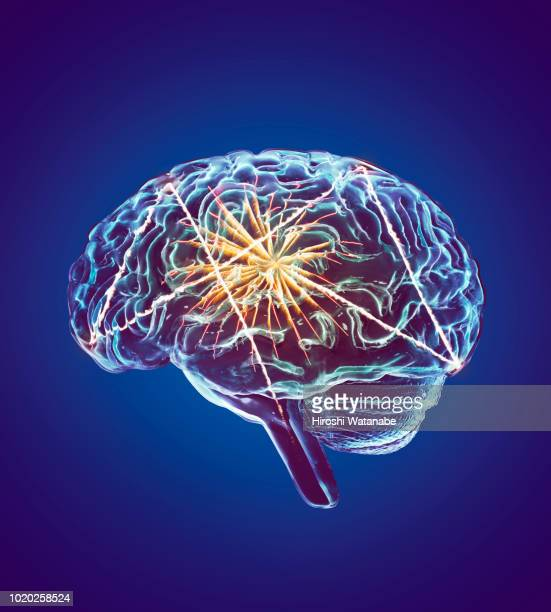 fireworks in brain - human nervous system stock pictures, royalty-free photos & images