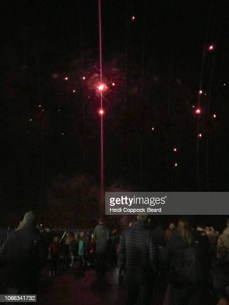 fireworks - heidi coppock beard foto e immagini stock
