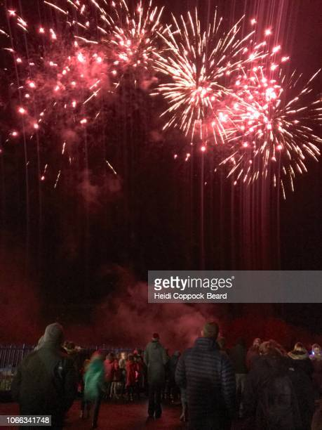 fireworks - heidi coppock beard stock pictures, royalty-free photos & images