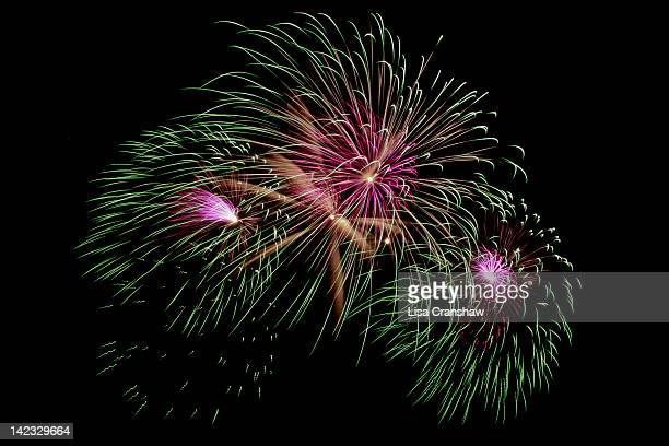 fireworks - lisa cranshaw stock pictures, royalty-free photos & images
