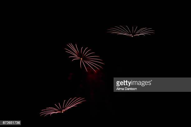 fireworks - alma danison stock photos and pictures