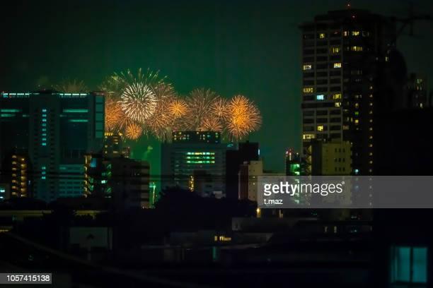 firework-tokyo.distant view. - フェス ストックフォトと画像