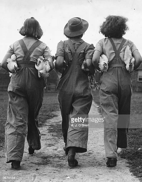 Firmly clutching some chickens under their arms three land army girls turn their backs on the camera at the Northamptonshire Institute of Agriculture...