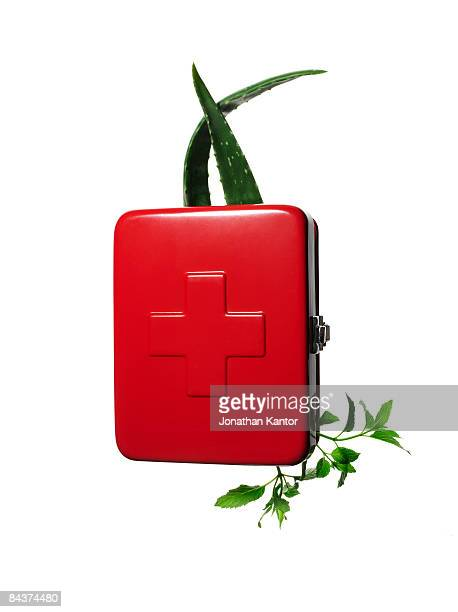 First Aid box with Aloe and herbs