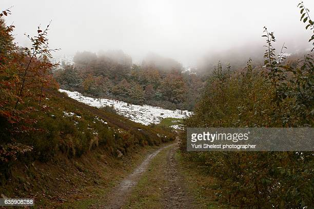 First autumn snow in the mountains