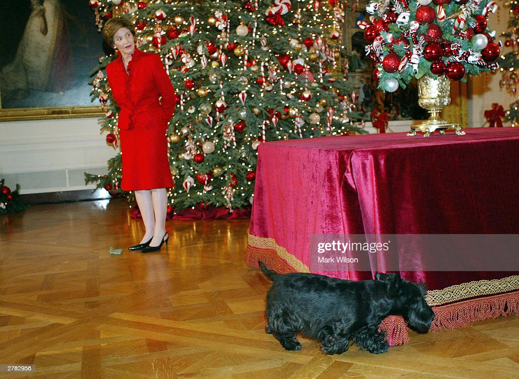 The First Lady Shows Off White House\'s Holiday Decor. Photos and ...