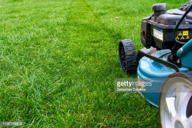 first followed at lawn mower cutting, down the tall grass in the backyard, grass, green, machine, mowed lawn - mulch stock pictures, royalty-free photos & images