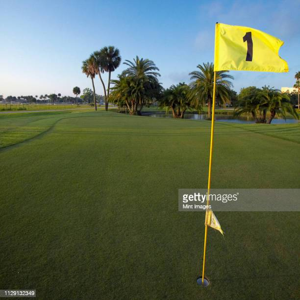 first hole on a golf course - florida landscaping stock pictures, royalty-free photos & images