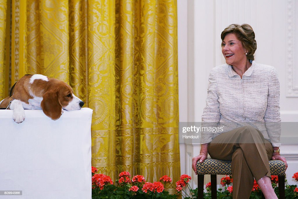 Westminster Kennel Club's 2008 Best in Show Visits The White House : News Photo