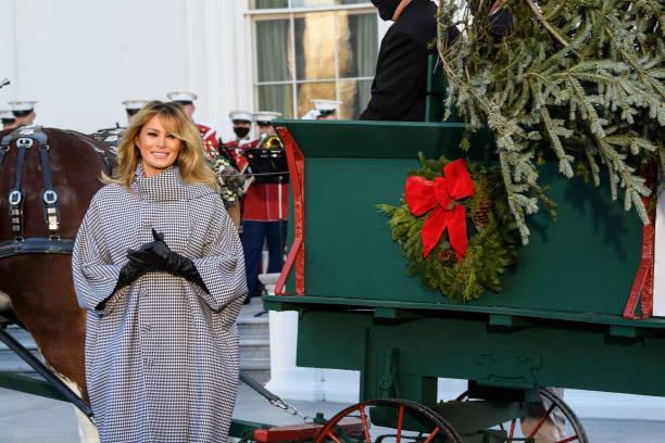 DC: First Lady Melania Trump Receives 2020 White House Christmas Tree