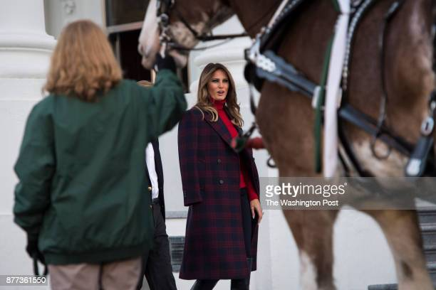 First lady Melania Trump with her son Barron Trump looks at the Wisconsingrown Christmas Tree at the North Portico as it makes its way the Blue Room...