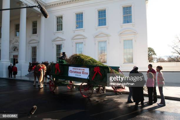 First lady Michelle Obama and daughters Sasha and Malia welcome Eric and Gloria Sundback who donated the official White House Christmas Tree at the...