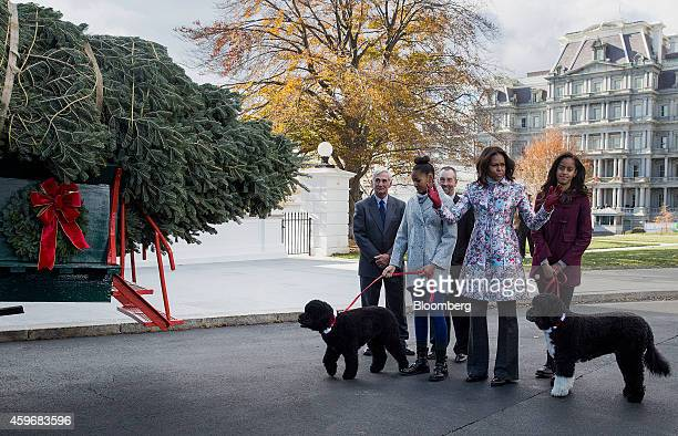 US First Lady Michelle Obama center gestures while greeting the White House Christmas tree with her daughters Malia Obama right and Sasha Obama...