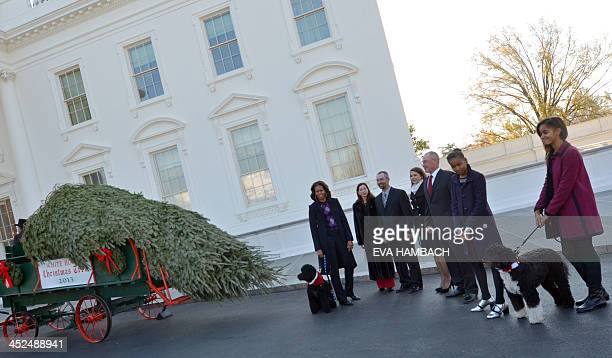 First Lady Michelle Obama daughters Malia and Sasha dogs Bo and Sunny welcome the Official White House Christmas Tree to the White House November 29...