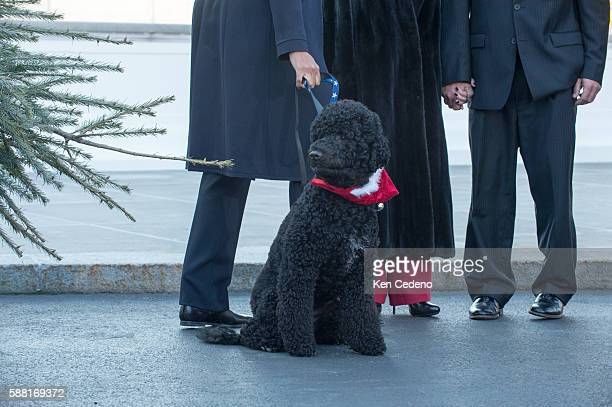 First Lady Michelle Obama holds their dog Bo while she and her daughters Sasha Obama and Malia Obama and Christopher Botek and Kyra Yurko of...