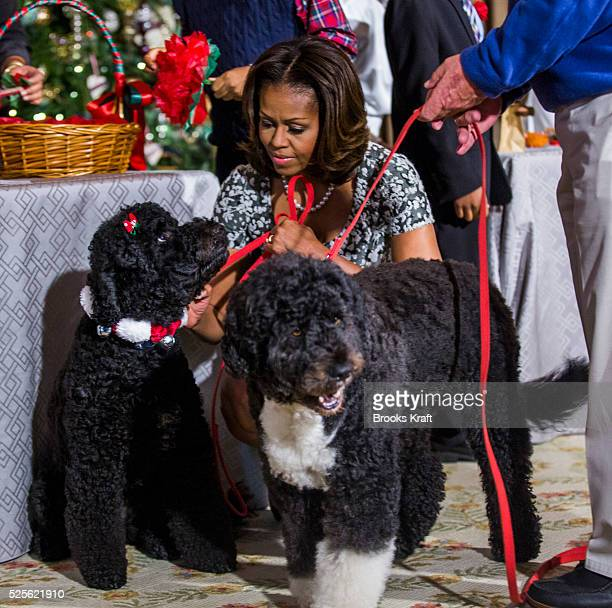 US First Lady Michelle Obama with the family dogs Sunny and Bo during an event to preview the holiday decorations at the White House in Washington DC
