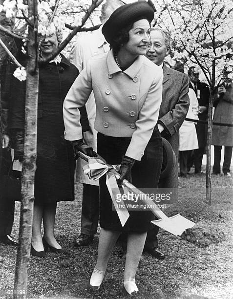 FILE First Lady Mrs Lyndon B Johnson plants a cherry tree on the Tidal Basin just a few feet from original trees planted by Mrs William Howard Taft...