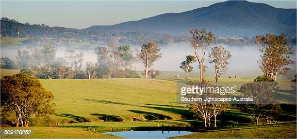 First light, countryside near Eden, New South Wales, Australia