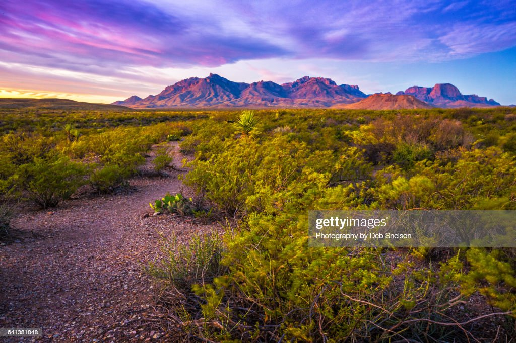 First Light on Chisos Mountains Big Bend National Park : Stock Photo