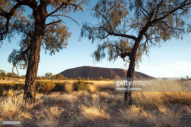 First light over Uluru, in the red sand desert of the outback, Northern Territory, Australia. Uluru, also known as Ayers Rock, is a large sandstone...