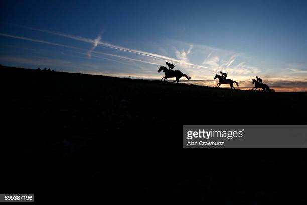 First lot climb the all weather gallop at Nicky Hendersons Seven Barrows stables on December 19 2017 in Lambourn United Kingdom