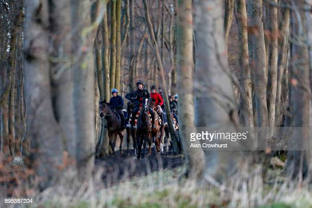 First lot make their return through the woods after galloping at Nicky Hendersons Seven Barrows stables on December 19 2017 in Lambourn United Kingdom