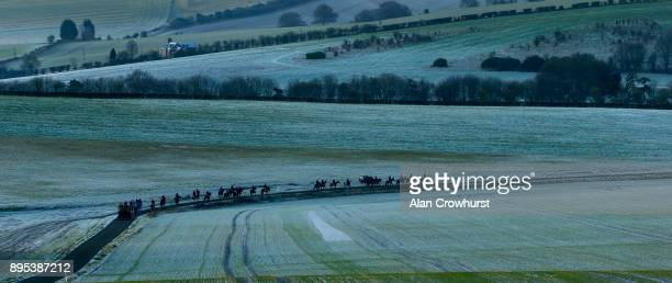 First lot make their way back down the all weather gallop at Nicky Hendersons Seven Barrows stables on December 19 2017 in Lambourn United Kingdom