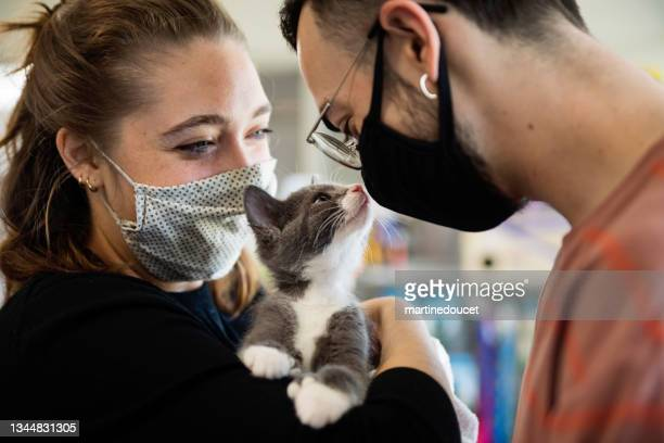 """first meeting of newly adopted kitten and millenial couple. - """"martine doucet"""" or martinedoucet stock pictures, royalty-free photos & images"""