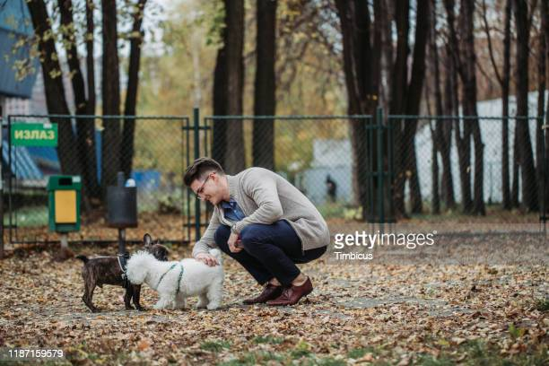 first meeting - off leash dog park stock pictures, royalty-free photos & images
