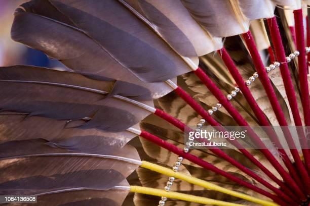 First Nation Powwow, editorial-Bildern