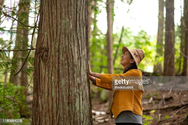 first nations woman blessing a cedar tree - first nations stock pictures, royalty-free photos & images