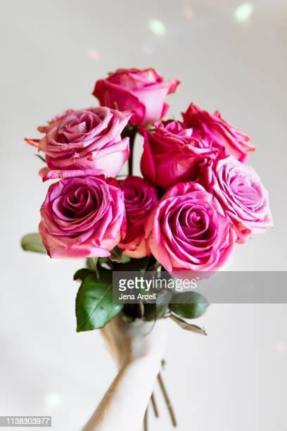 first person perspective bouquet, hand holding roses, personal perspective bouquet, personal perspective roses, bouquet of roses, love, romance, romantic, valentine's day, self love, pink roses - jena rose fotografías e imágenes de stock