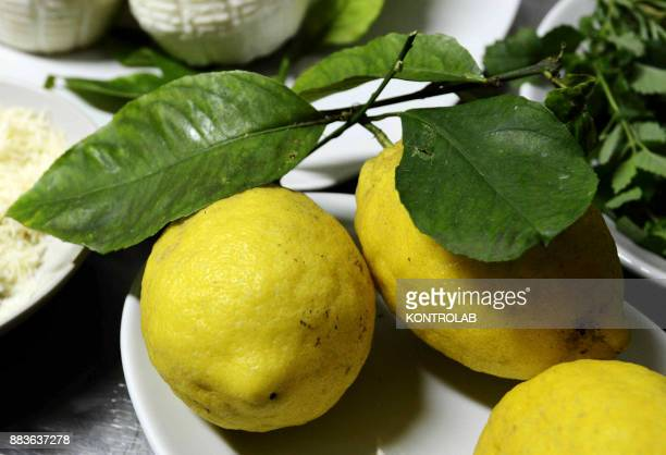 EQUENSE NAPLES CAMPANIA ITALY A first plate of lemons by chef Luigi Sorrentino in Osteria la Torre in Vico Equense