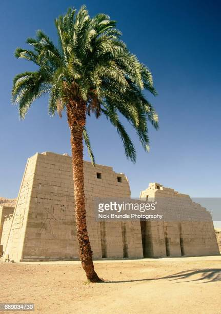 first pylon of the mortuary temple of ramesses iii, medinet habu, egypt. - rameses ii stock photos and pictures