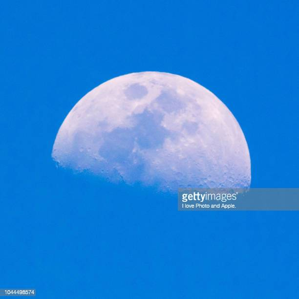first quarter moon - month stock pictures, royalty-free photos & images
