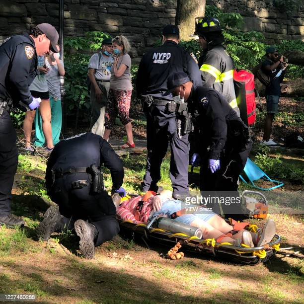 First responders help yhree people after get injured after a branch falls on them in Riverside Community Park in Upper West Side Manhattan on May 27,...
