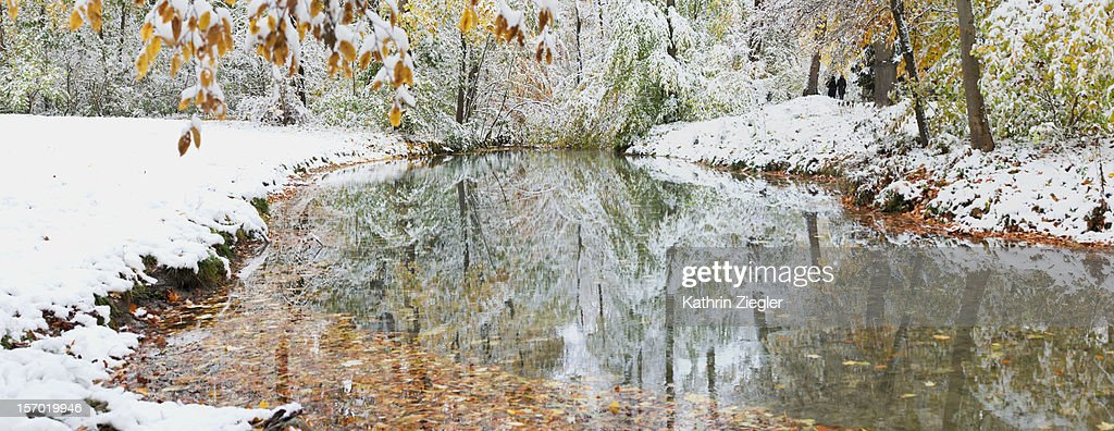 first snow : Stock Photo