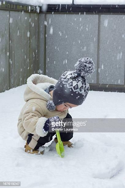 first snow - peter lourenco stock-fotos und bilder