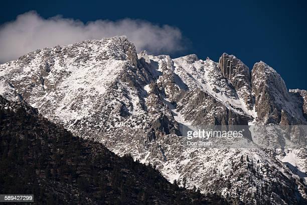 first snow - don smith imagens e fotografias de stock