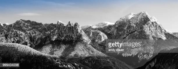 first snow - andy dauer stock pictures, royalty-free photos & images
