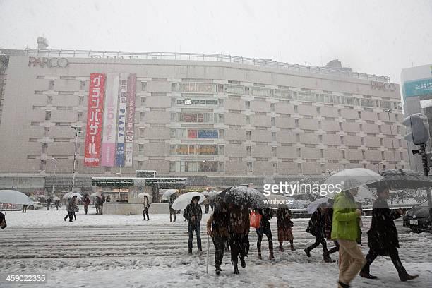 最初の降雪東京,日本