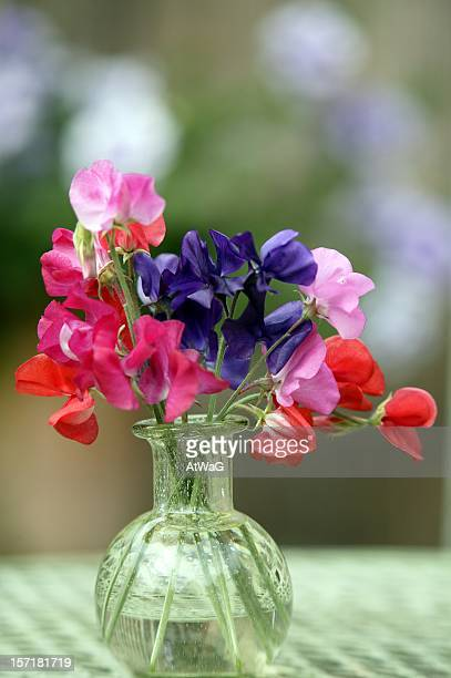 First sweet peas of the year