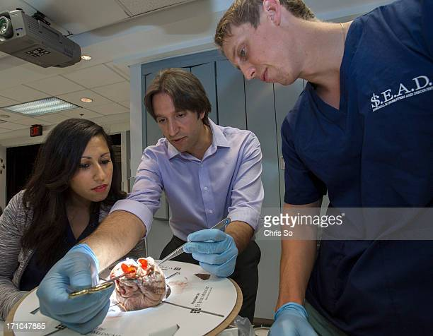 TORONTO ON JUNE 20 First year med student Nadine Samuel left listens to resident cardiac surgeon Dimitrios Tsirigotis middle explain how to replace a...