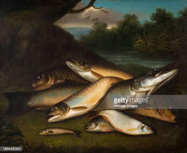 Fish, 1790. Artist Moses Haughton.