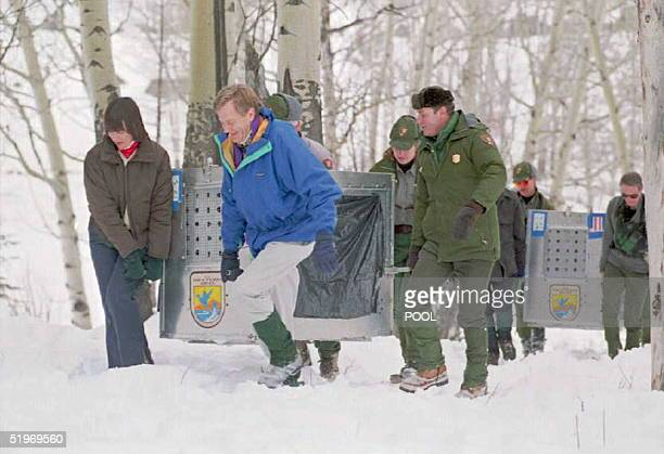 Fish and Wildlife Service Director Mollie Beattie , US Secretary of the Interior Bruce Babbitt , and Yellowstone Park Superintendent Mike Finley...