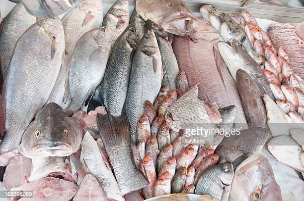 Bazar de pescado