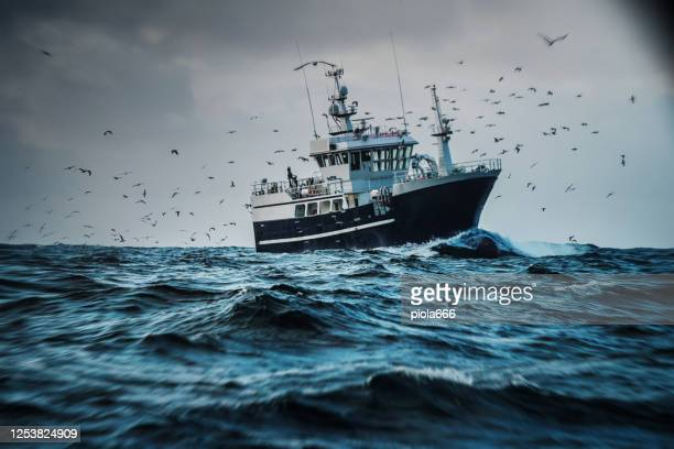 fish boat vessel fishing in a rough sea: industrial trawler - fishing boat stock pictures, royalty-free photos & images